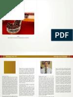 RIS-2013.pdf