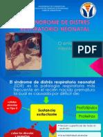 Sindrome de Distres Respiratorio Neonatal (2)