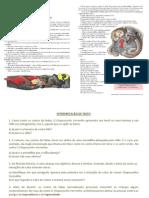 51871886-Revisao-Teste-6º-ano-1º-BIM-2011