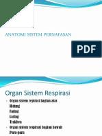 1.Anatomi Sistem Pernafasan