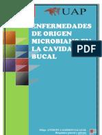 Enfermedades de Origen Microbiano