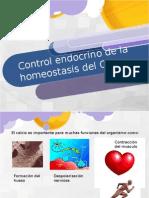 Control Endocrino de La Homeostasis Del CA