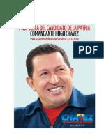 Programa-de-la-Patria-2013-2019 letra grande.pdf