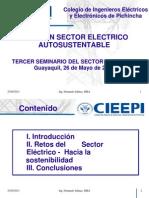 Hacia Un Sector Electrico Autosustentable