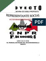 Proyecto Ganado Bovino El Laurel
