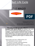 53125268 Product Life Cycle of Maggi