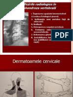 73459315 Patologia Sistemului Nervos Periferic Ro