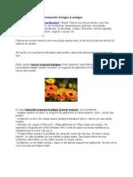 Tratamentul Naturist Al Tumorilor Benigne Si Maligne