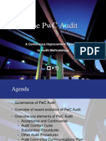 The PwC Audit - 011704 Presentation