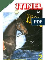 Sentinel UFO News - 002