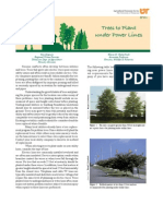 Trees to Plant Under Power Lines (SP611)