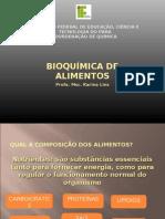 COMPOSIÇÃO ALIMENTOS BIOQUÍMICA