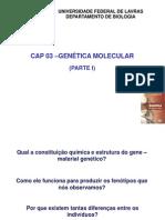 Cap 03 - Genetica Molecular Parte I