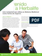 Herbalife .- Aprende la gran diferencias entre sistema multinivel y piramidal