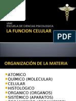 La Funcion Celular