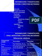 INTRODUCCION A LA MICROBIOLOGIA.ppt