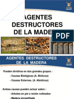 Agentes Destructores Madera 126980