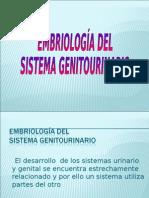 EMBRIOLOGIA DE APARATO GENITAL Y GENITOURINARIO