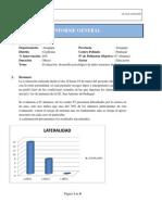 Informe General Pedregal