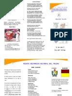 Dia Del Tolima 12 de Abril de 2013