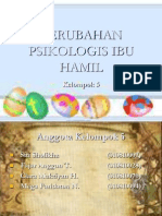PERUBAHAN PSIKOLOGIS IBU HAMIL.ppt
