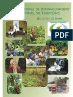 Plano territorial de desenvolvimeto suatentável do território