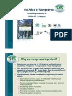 Mangrove World Atlas