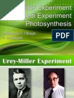 Urey-Miller and Redi Experiment, Photosynthesis