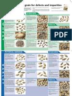 Grain Inspection Poster