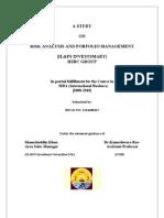 Risk Analysis and Protfolio Management
