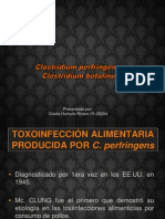 INTOXICACIONES ALIMENTARIAS POR CLOSTRIDIOSSS.ppt