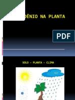 aula-17-nmp-mo