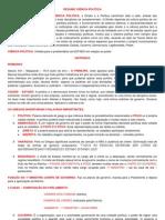 RESUMO CIÊNCIA POLÍTICA.docx