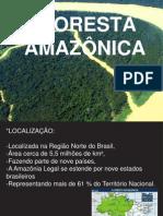 Floresta Amazonica Ppt