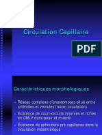 Circulation Capillaire