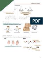 01-Stereochemistry