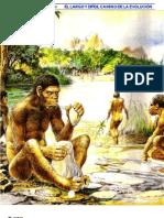 (Natura Nº 63, Jun-1988 - Antropologia) Homo habilis, un antepasado muy cercano