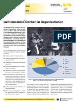 Gemeinsam Denken in Organisationen.pdf