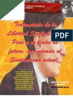 Sindicalismo Peruano-eduardo Ayala Tandazo Uladech Piura