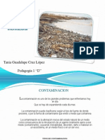 Contaminacion (Tania)
