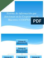 Sistema de información que funcionan en la Cooperativa