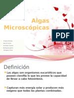 Equipo 3_algas Microscopicas