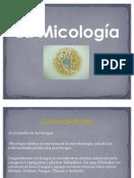 32897914-Micologia
