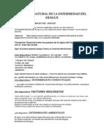 Historia Natural de La Enfermedad Del Dengue