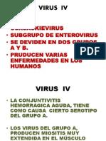VIRUS  IV.pptx