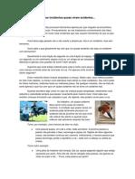 Muitos incidentes quase viram acidentes.pdf