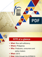 2013 National Year of Rice Briefer
