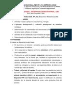GUIA_ACTIVIDADES_TC-_BM_ECAPMA_II-2012_.pdf