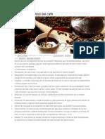 Proceso Industrial del café