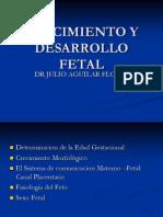 Crecimiento y Desarrollo Fetal 2013